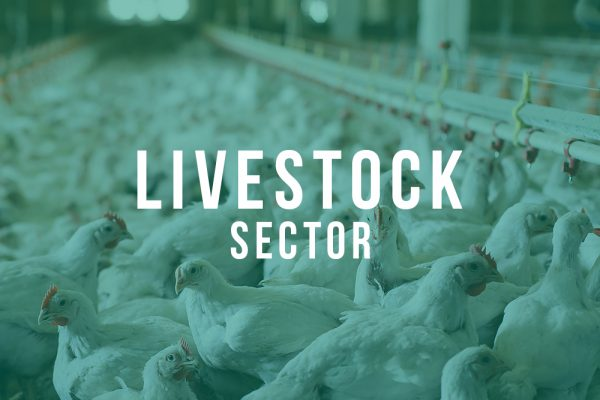 Livestock Applications